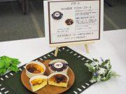 南九州ファミリーマート「鹿児島・宮崎限定ファミマ試食会」へ行ってきました!10/8から発売のバスクチーズケーキも!!