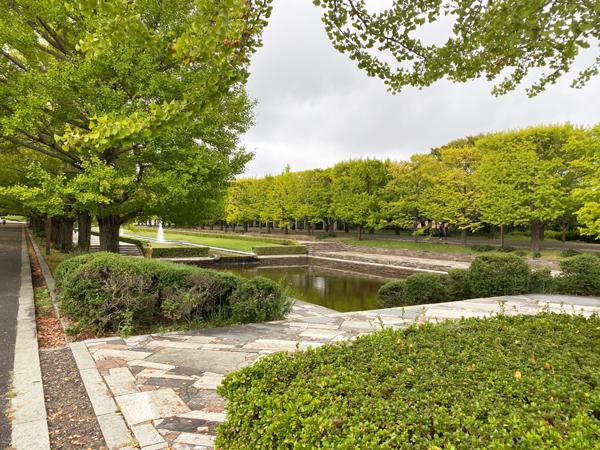「国営 昭和記念公園」2019年秋のイベント特集♪Part2♪