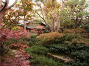 【八王子】11月末で惜しまれながら閉店「美ささ苑」