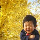 【宇都宮】素敵な写真が撮れる!黄金色に輝く紅葉!《宇都宮駅東公園》