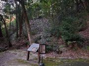 松山城ARアプリスポット「登り石垣」全国的に珍しい貴重な石垣@松山城