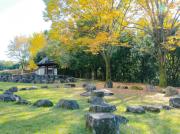 自然豊か!5つの広場を堪能できる、柳沢の池公園@南大沢