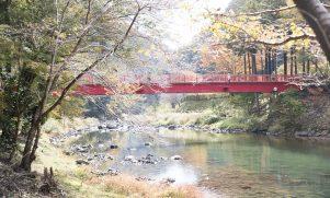 紅葉のピークはこれから!宇甘渓 岡山駅から45分の紅葉スポット【吉備中央】