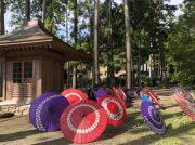 エアアジアで行く、仙台・松島の歴史を感じる癒やし旅