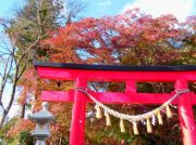 【紅葉スポット】秋を感じる厳かな空間へ【仙台市泉区】