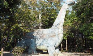 野鳥観察にどんぐり拾い!柏・手賀の丘公園で秋のレジャー
