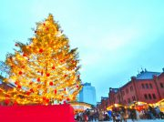 毎年恒例のクリスマスツリー巡りpart3