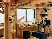 【NEW OPEN】話題の猫カフェが鹿児島中央駅近くにオープン「猫カフェ にゃこる」