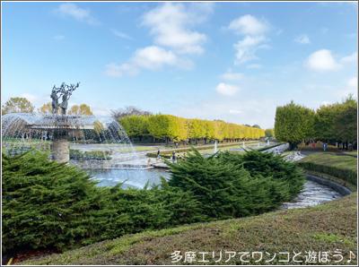 昭和記念公園「黄葉紅葉まつり2019」