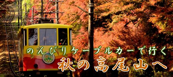 秋の高尾山へ