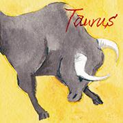 牡牛座taurus