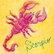 蠍座scorpio