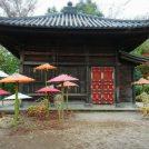 1200年の歴史ある「川越大師喜多院」で紅葉狩りと文化財を堪能♪