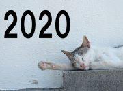 【2020年の予習クイズ】Amazonギフト券1000円分を抽選で10人に!