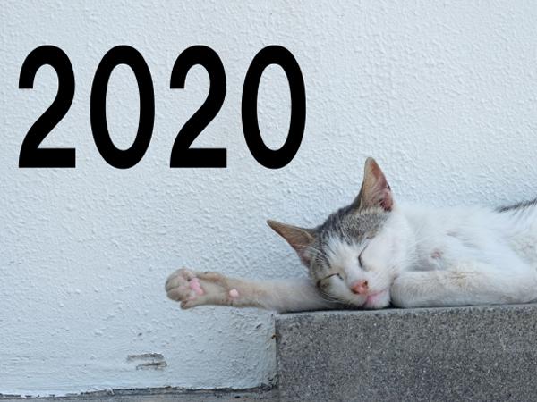 【2020年の予習クイズ】Amazonギフト券1000円分を10人に
