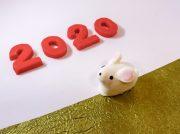 愛媛で迎える令和初のお正月、元日からイベント&ショッピングへでかけよう♪