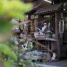 ずっと居たいほど心地よいお花屋さんの2階の素敵カフェ「三原園」@勝田台