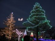 【芳賀町】子供も大人も楽しめる冬の人気イベント!「HAGAグルミネーションフェス」