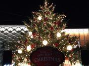 グランベリーパーク 初めてのクリスマスイルミネーションが点灯!
