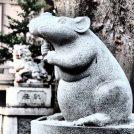 """【戸部杉山神社】2020年の干支で大人気""""回せるこまネズミ""""にお参りしました!"""