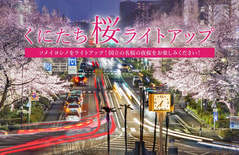 くにたち桜ライトアップ2020 4/5(日)まで | リビング多摩Web